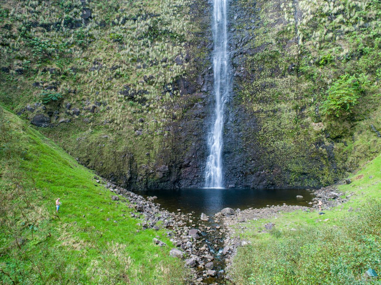 Muliwai Trail, Kohala Forest Reserve Waimanu Bay