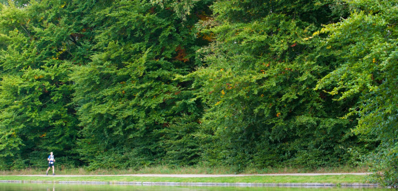 Trailrunning Nederland Zout Fotografie