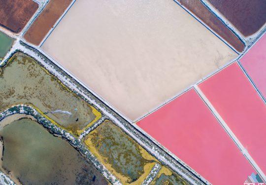 The Last Line; Pink Lake Las Salinas de Torrevieja